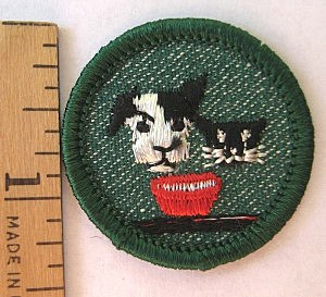 Girl Scout Badge Dog - Cat
