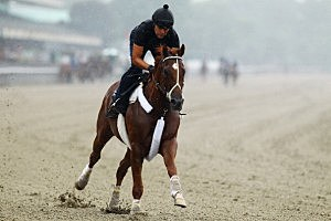 2012 Belmont Stakes - Previews