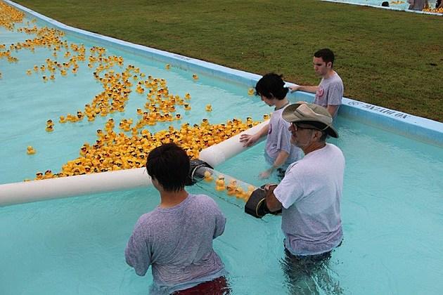 Great Texarkana Duck Race (2)